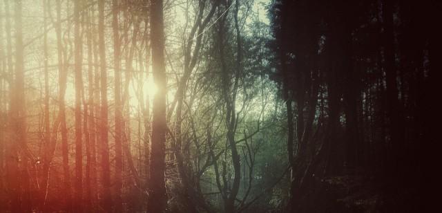cropped-tumblr_nj72my6zy31qawpa6o1_1280.jpg